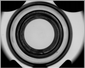 Telesto camera image